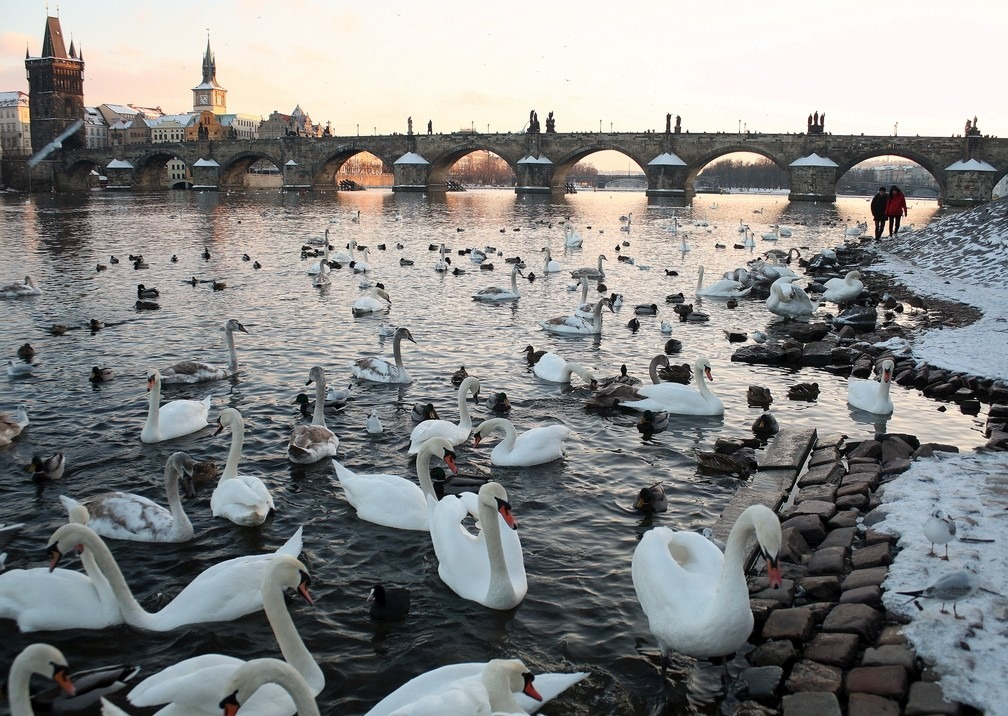 Walk along Vltava river. Photo by Richard Hodonicky