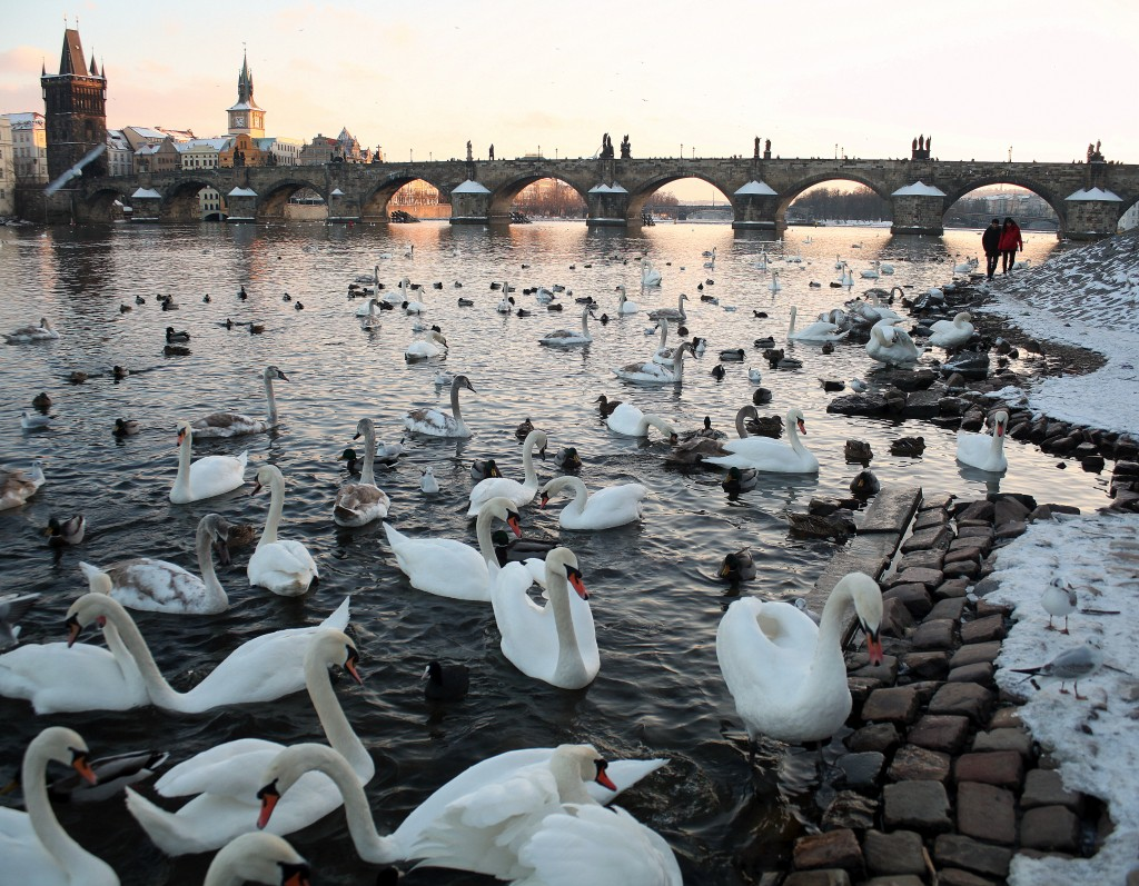 What to do during winter in Prague – Part 2