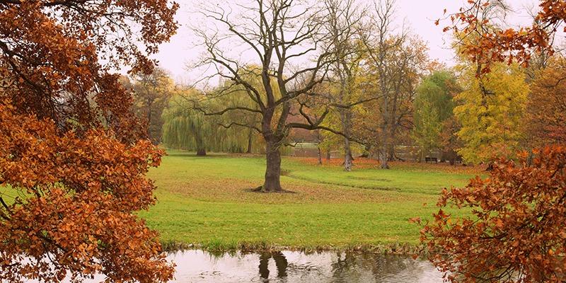 sir_tobys_hostel_prague_autumn_in_prague_1_800x400
