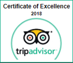 sir tobys hostel prague tripadvisor award 2018